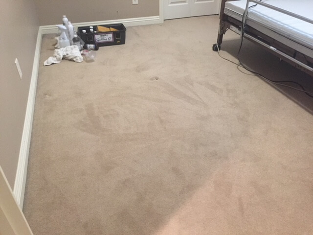 An after photo of a stain we removed