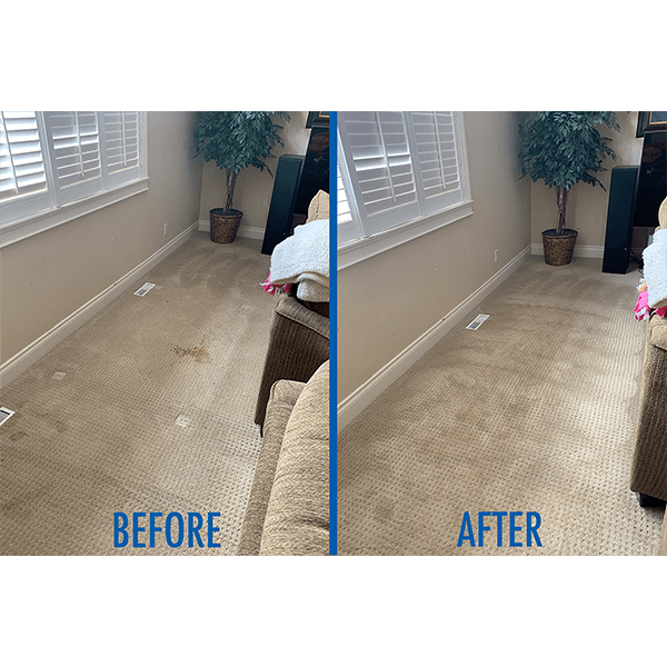 A recent stain removal Chinook Chem-Dry completed
