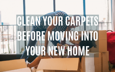 Clean Your Carpets Before Moving In