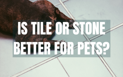 Is Tile or Stone Better for my Pets?
